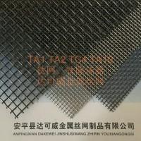 钛网 达可威钛丝网 海水养殖网